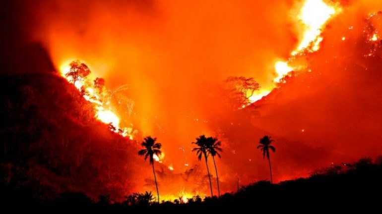 As chamas: da Amazônia e acolonial